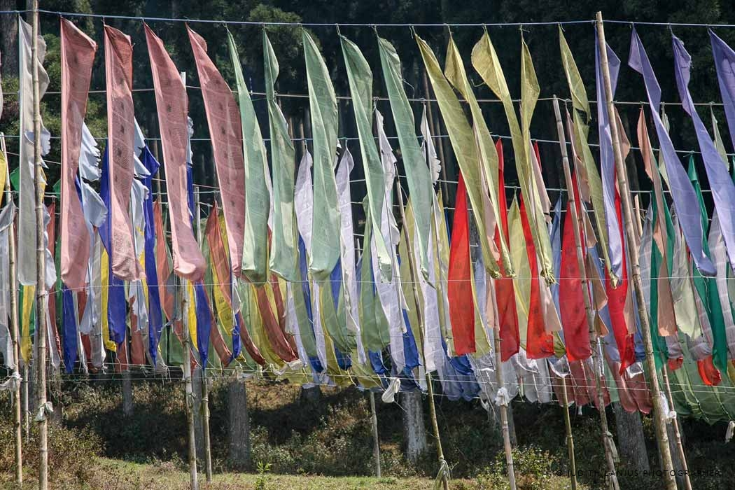 9800 Prayer Flags on the road from Darjeeling to Sikkim, India